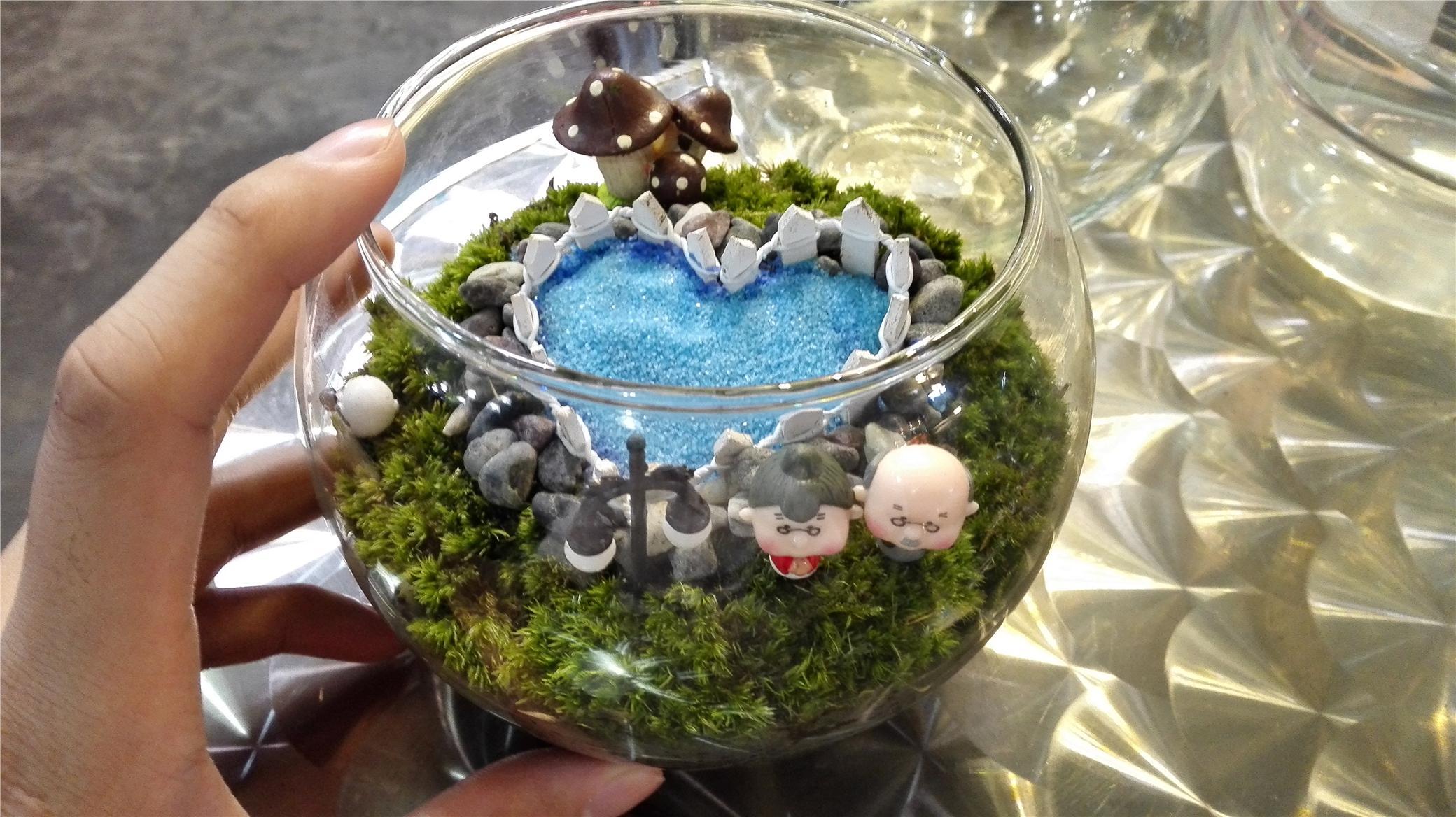 DIY Small Living PlantTerrarium De End PM - Amazing diy non living terrarium