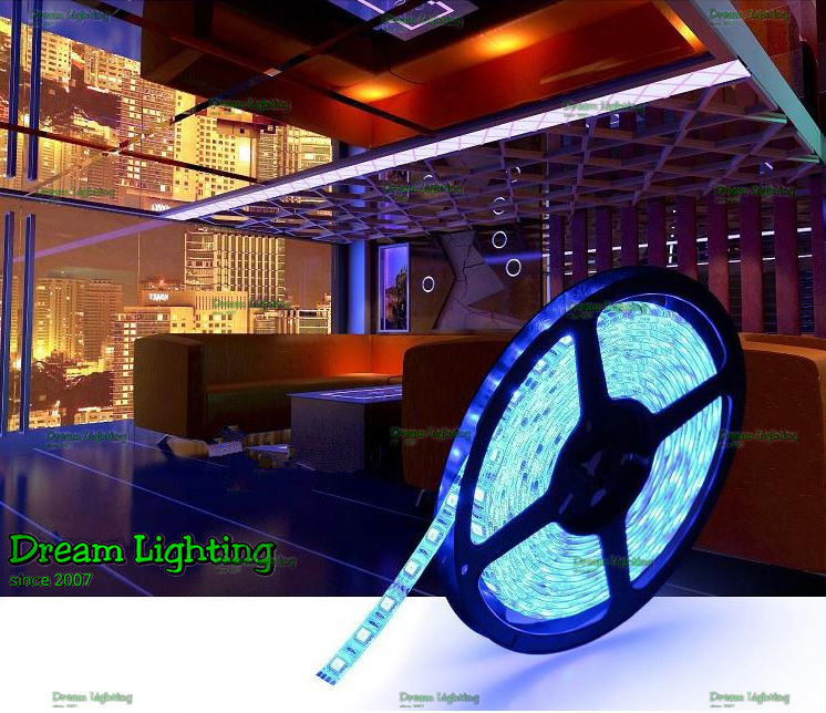 Dream Lighting / LED Lights Strip SMD 5050 12V 300 LED (5 meter) / Blu