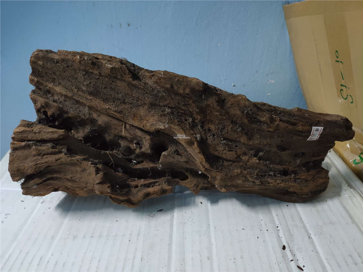 Driftwood For Aquarium Aquascape