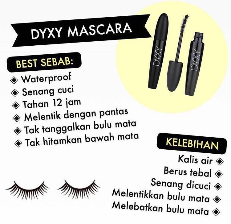 DYXY Combo 4 Items - BC Cream(BEIGE) + Face Mist + Brush + Mascara