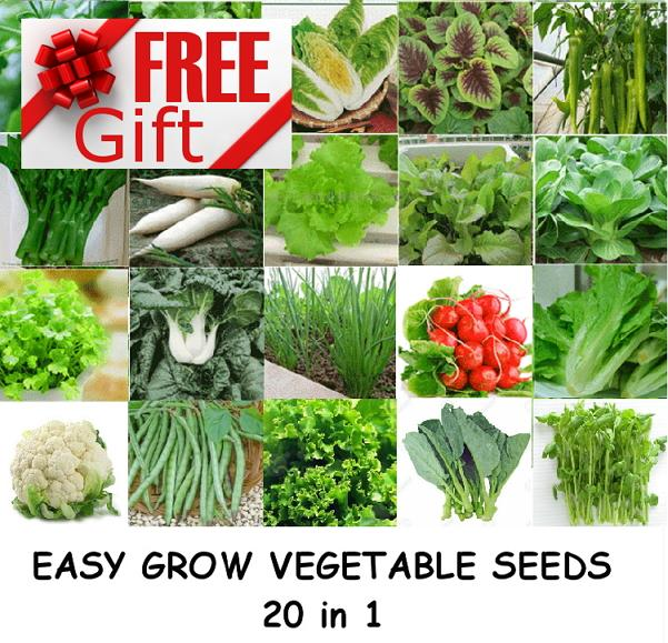 Delicieux Easy Grow Farm Garden Vegetable Seeds Combo 20 Sets In 1