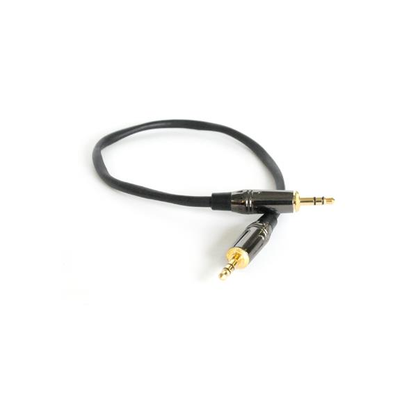 EB Basic 3.5mm(M) to 3.5mm(M) Stereo Audio Aux Cable -30CM