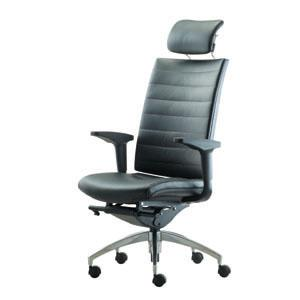 Euro Ergonomic Office Chair Alude Ms2510l 22m1 Leather