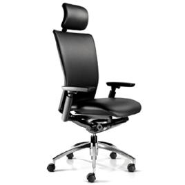 Euro Ergonomic Office Chair Headlines Ms2910ll 25m3 Leather