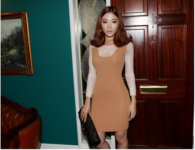 Fashion Long Sleeve Elegant Dress