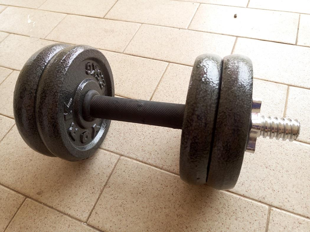 Fitness Equipment YORK Cast Iron Dumbbell Bar Weight Plate Plates Set. u2039 u203a & Fitness Equipment YORK Cast Iron D (end 10/22/2019 12:15 PM)