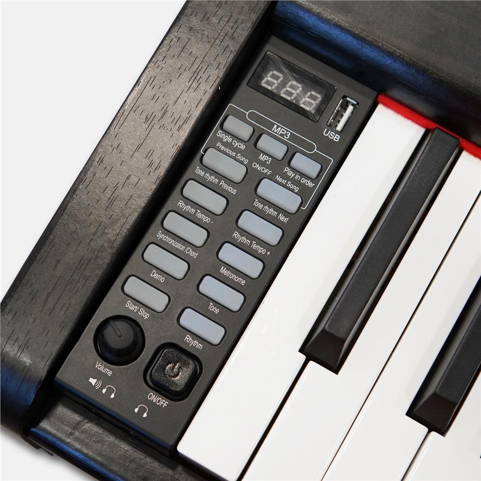 FLAVIAN S-20 88 keys Electric Digital Piano Package