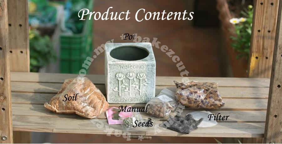 Flower Gift Set - Stone Age Style - Desktop Plant Kit