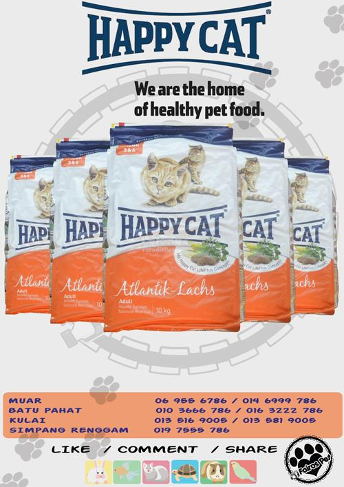 free post happy cat atlantic cat fo end 7 16 2017 6 15 pm