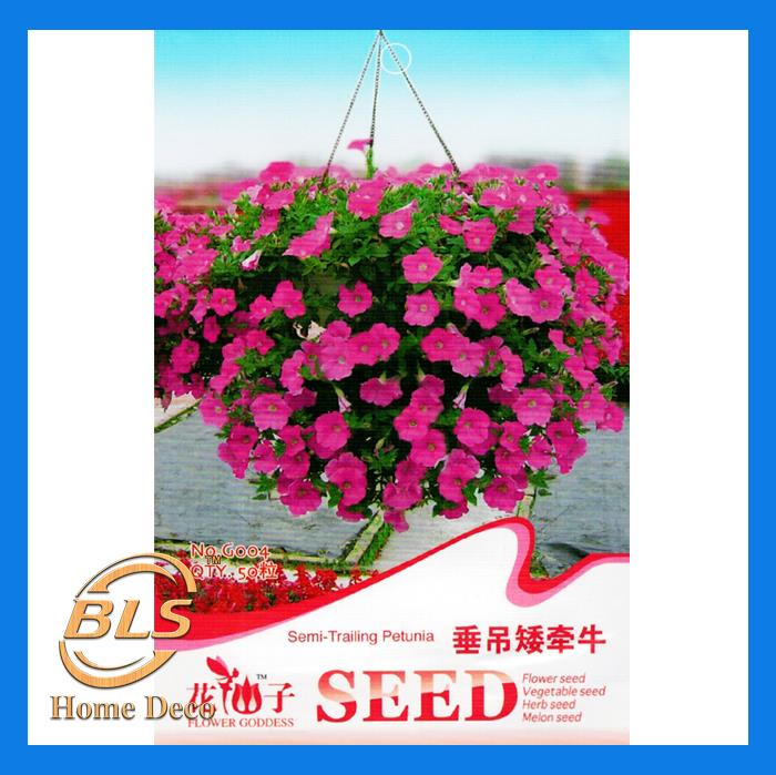 G004 SEMI-TRAILING PETUNIA FLOWER GODDESS VEGETABLE FLOWER FRUIT HERB