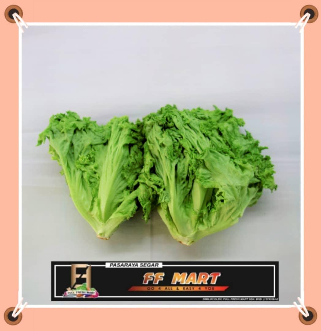 Green Coral 500g+-