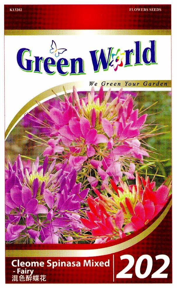 Green World Seeds Fairy Cleome Spin End 5 4 2018 10 15 Pm