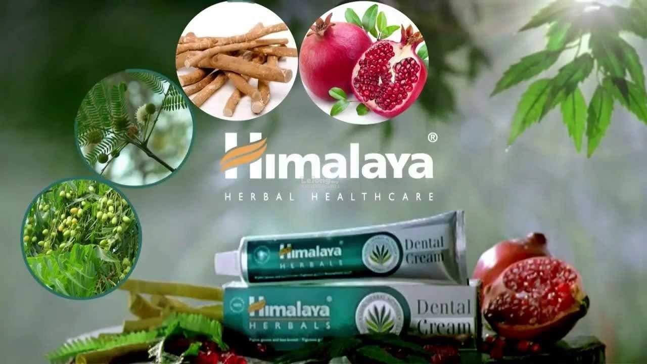Himalaya DENTAL CREAM For Adults 100% HERBAL And VEGETARIAN
