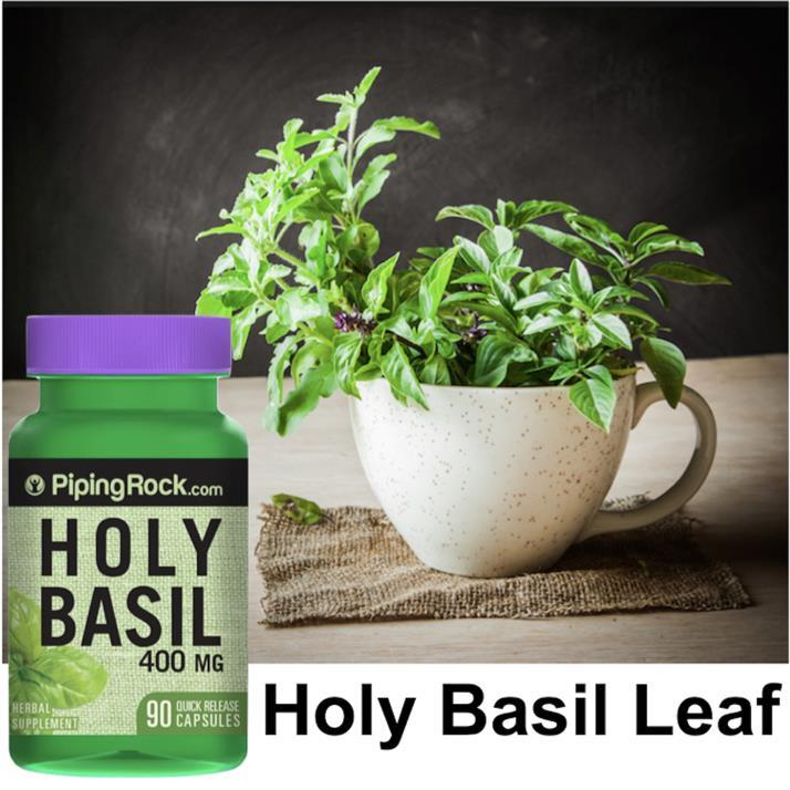 Holy Basil 400mg, 90 Capsules (Stress, Antioxident, Liver, Tension)