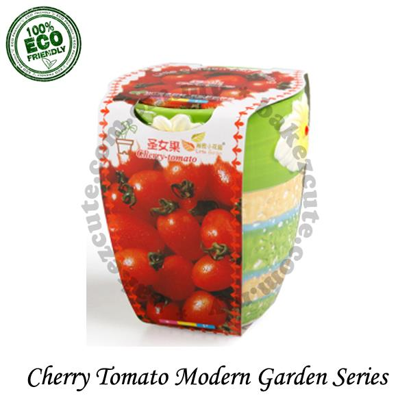Home Decor Set - Cherry Tomato Modern Fruit Garden - DIY Pot Plant Kit