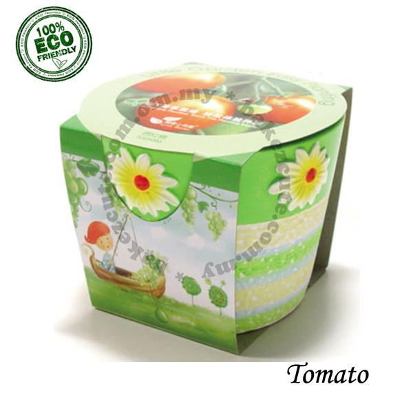 Indoor Plant Kit - Tomato Fruit Farming - Home Decor Set