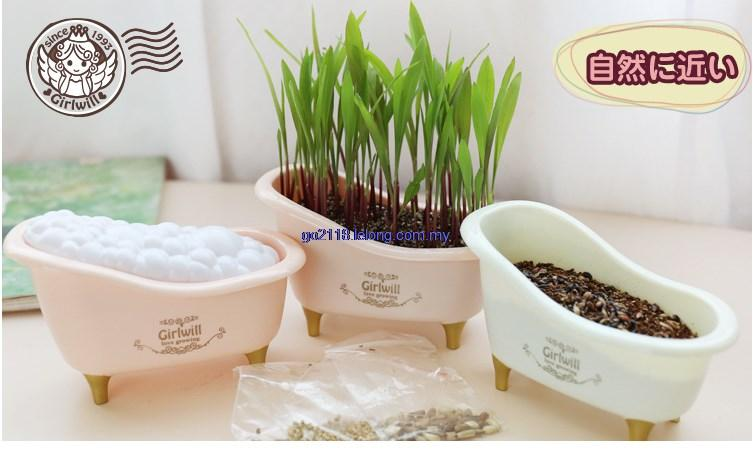 Japan Creative Cute Mini Tub Desktop Plants Purify Air Anti-Radiation