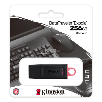 Kingston DataTraveler Exodia ( 256GB )