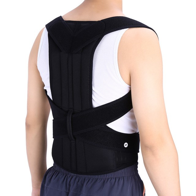 L Back Support Belt