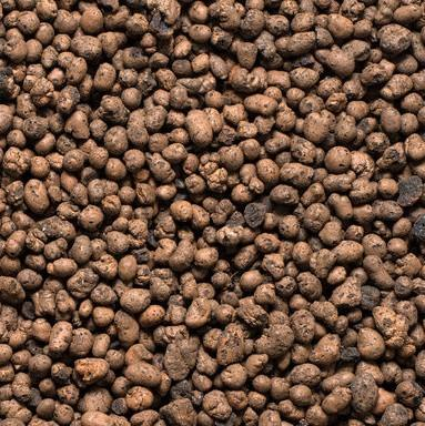 LECA for Hydroponic - 1kg Pack