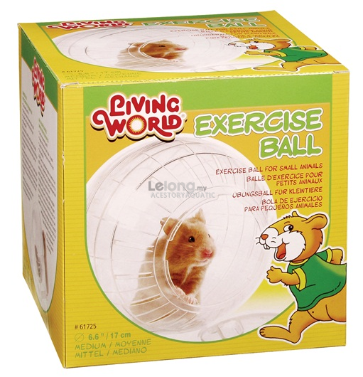 Living World Exercise Ball with Stand - Medium