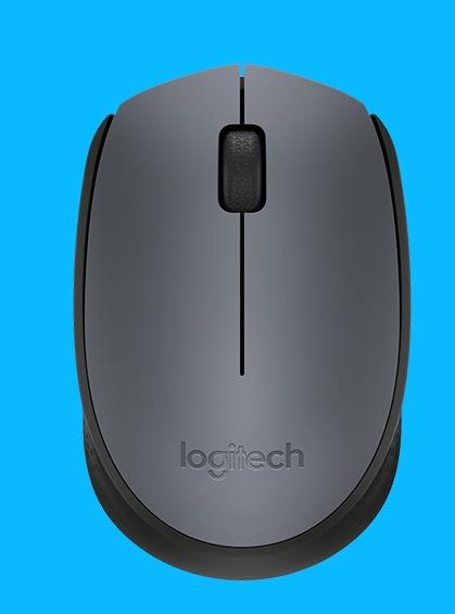 LOGITECH WIRELESS MOUSE M170 (BLK/GREY)