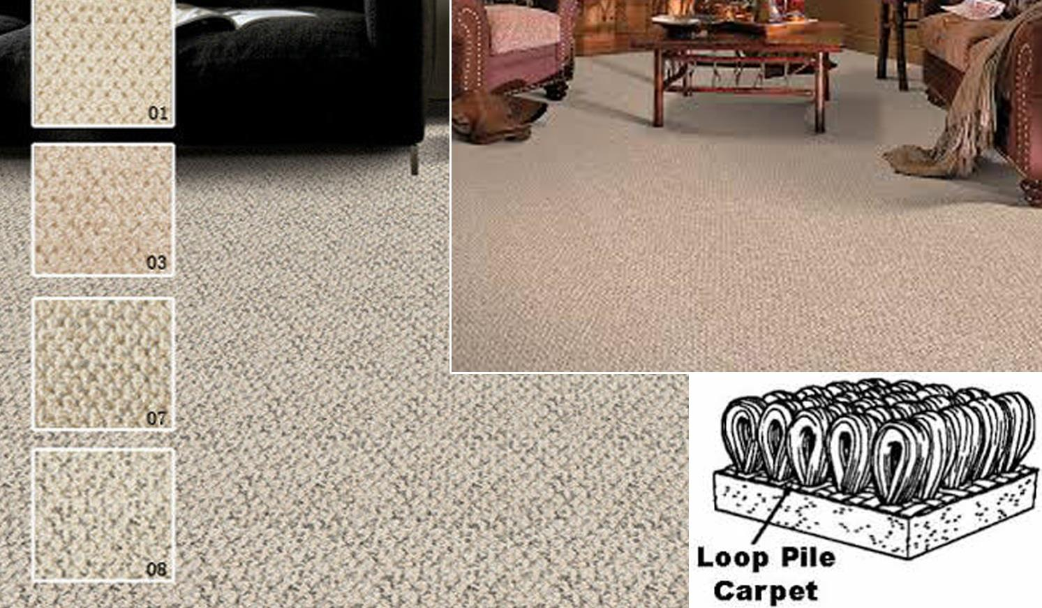 LOOP PILE CARPET COLLECTION BEST AND CHEAP IN MALAYSIA