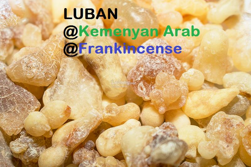 Luban Raw / Frankincense Raw - 1KG