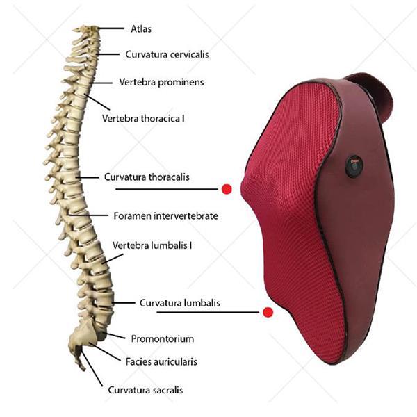 A Lumbar Neck Massage Health Care M End 10132019 115 Pm