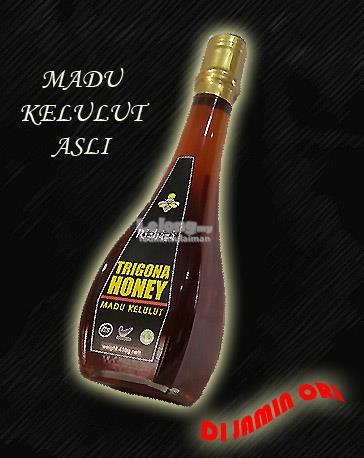 MADU KELULUT ASLI TRIGONA HONEY 430g - RIZHAZA
