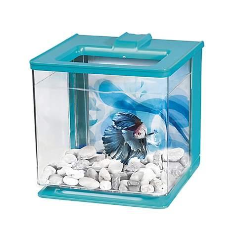 Marina Betta EZ Care Aquarium - Blue - 2.5 L (0.7 US Gal)