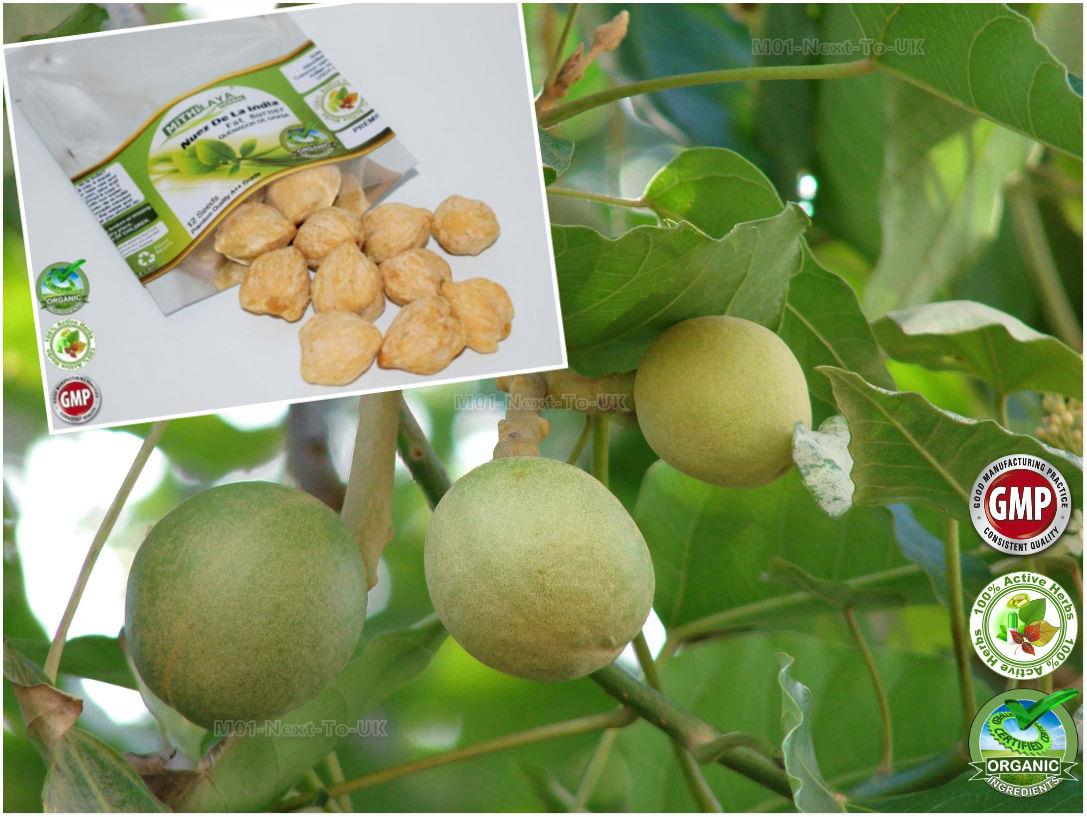 Buyers of herbal product - Mithilaya Herbal Organic Nuez De La India Premium A Grade