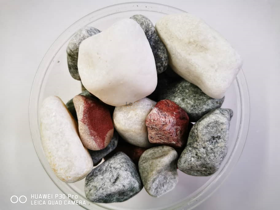 MX4 Pebble Stone 1kg (Aquarium Decoration Stone)