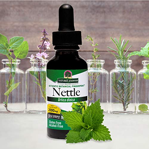 ~ Nature's Answer Nettles Extract | Herbal Supplement | Helps Support Prostate