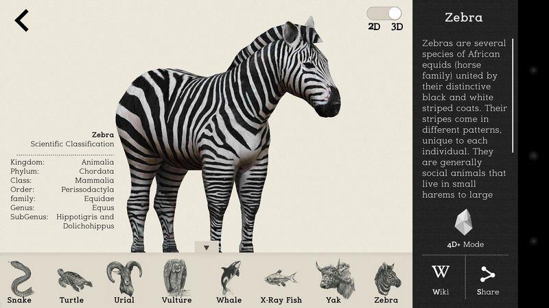 Octagon Studio Fun Interactive Kid Learning 4D+ Flash Card (Animal)