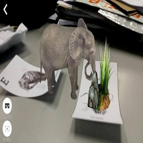 Octagon Studio Kid Learning 4D+ Flash Card (Animal+Space)