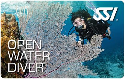 Open Water Diver Courses