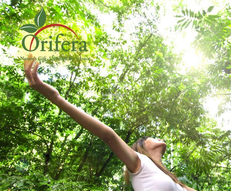 Orifera Natural Virgin Coconut Soap (Buy 5 Free 1)