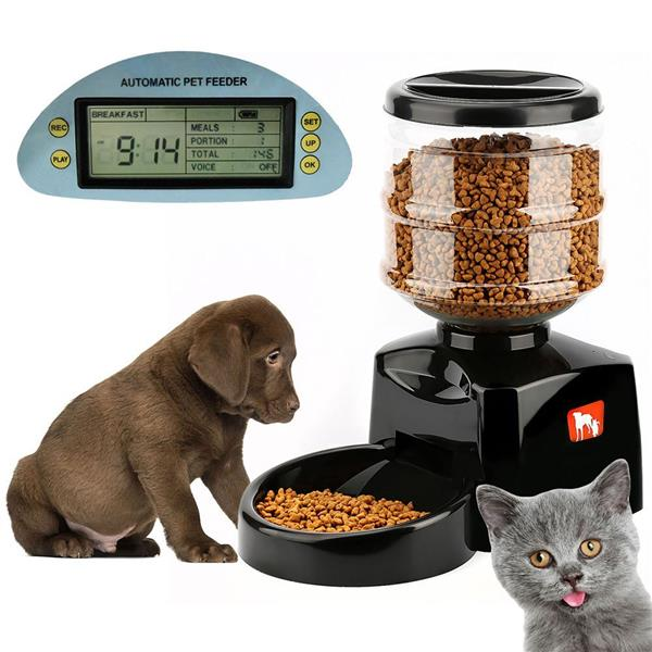 Pet Food Dispenser Medium Capacity Automatic Pet Feeder 5.5L