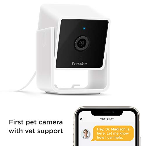 Petcube [New 2020] Cam Pet Monitoring Camera with Built-in Vet Chat for Cats