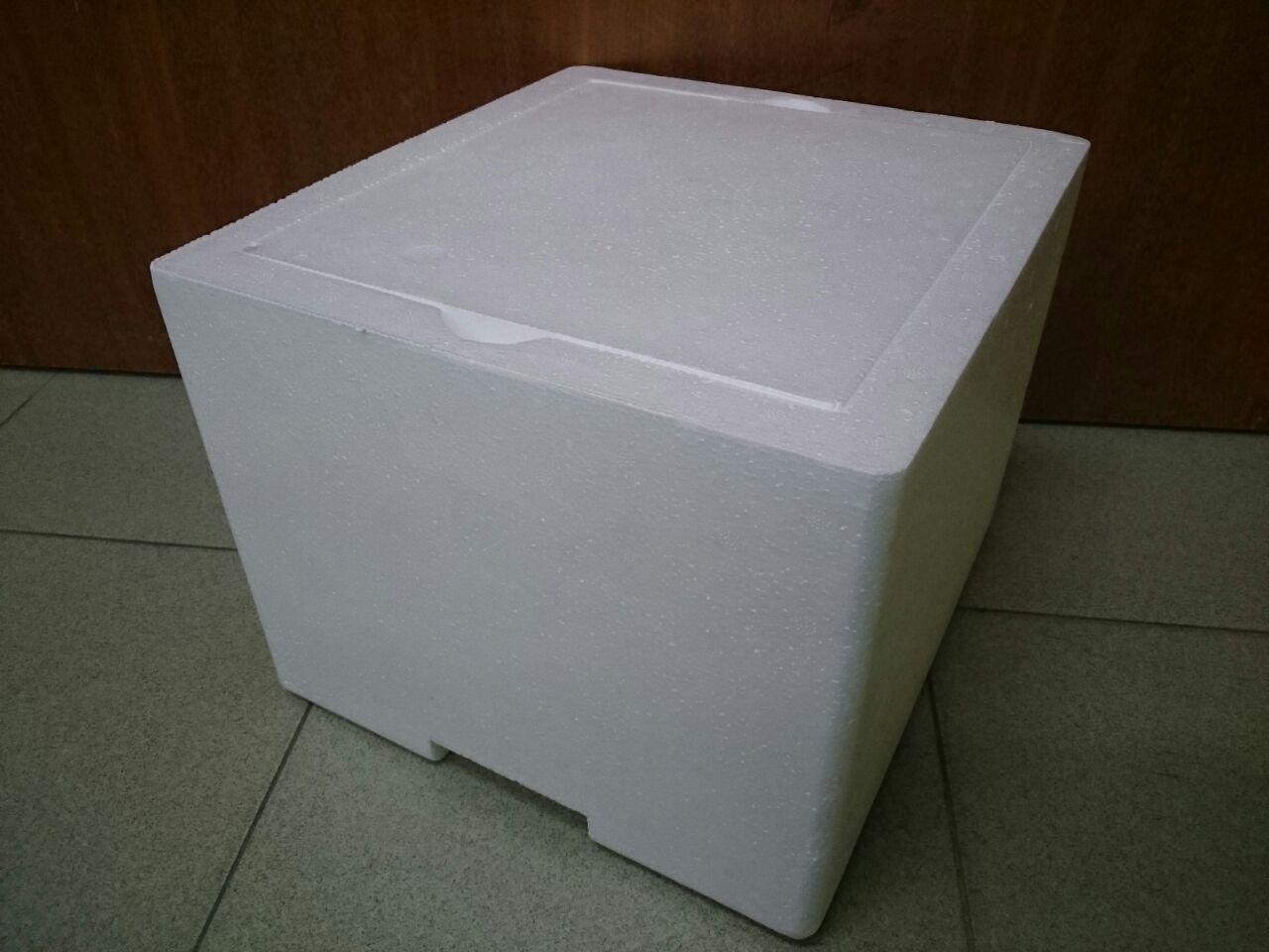 Polystyrene Ice Box - Large Size (Shrimp, Fish & Plant)