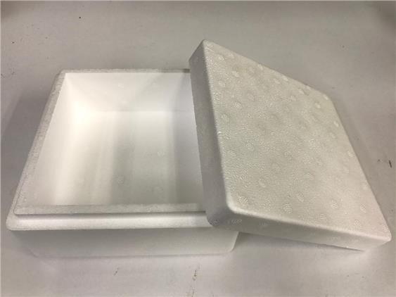 Polystyrene Ice Box -Small Size (Shrimp, Fish & Plant)