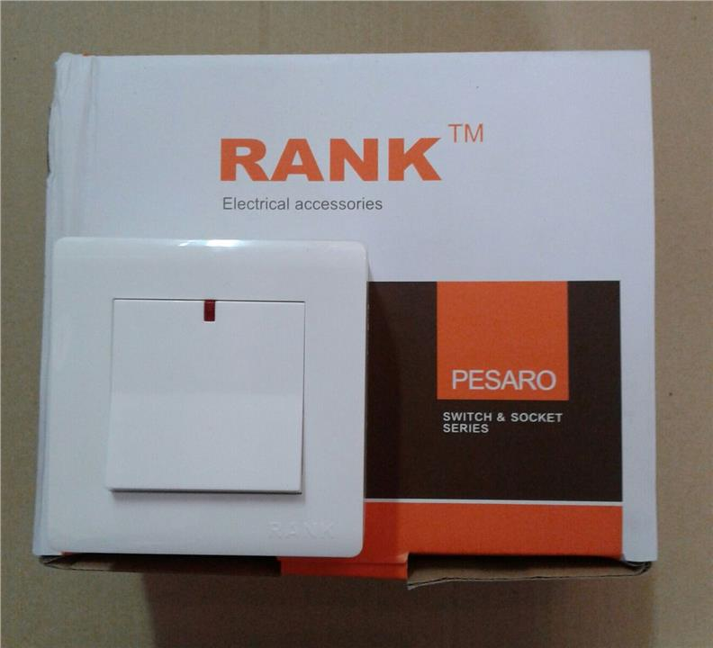 RANK PESARO 20A DP SWITCH WITH LED LIGHT