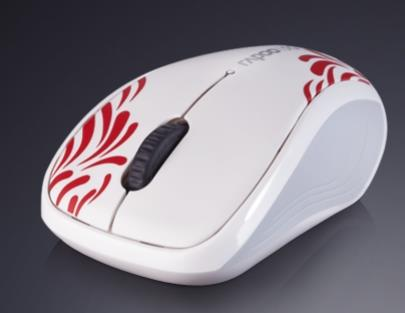 Rapoo 3100P Mouse Windows 8 X64 Treiber