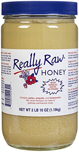 Really Raw Honey Energy Snack, Unstrained, 42 oz