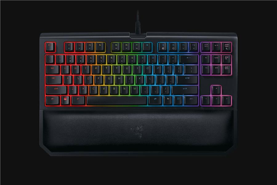 Razer Blackwidow Tournament V2 (Orange Switch) - RZ03-02190700-R3M1