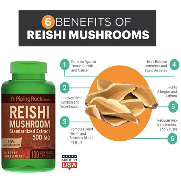 Reishi Mushroom, 500mg, 100 Caps (靈芝, lingzhi) Made in U