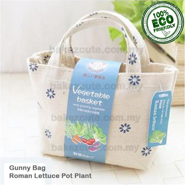 Roman Lettuce Cultivation in Mini Fashion Gunny Bag DIY Table Pot Plan