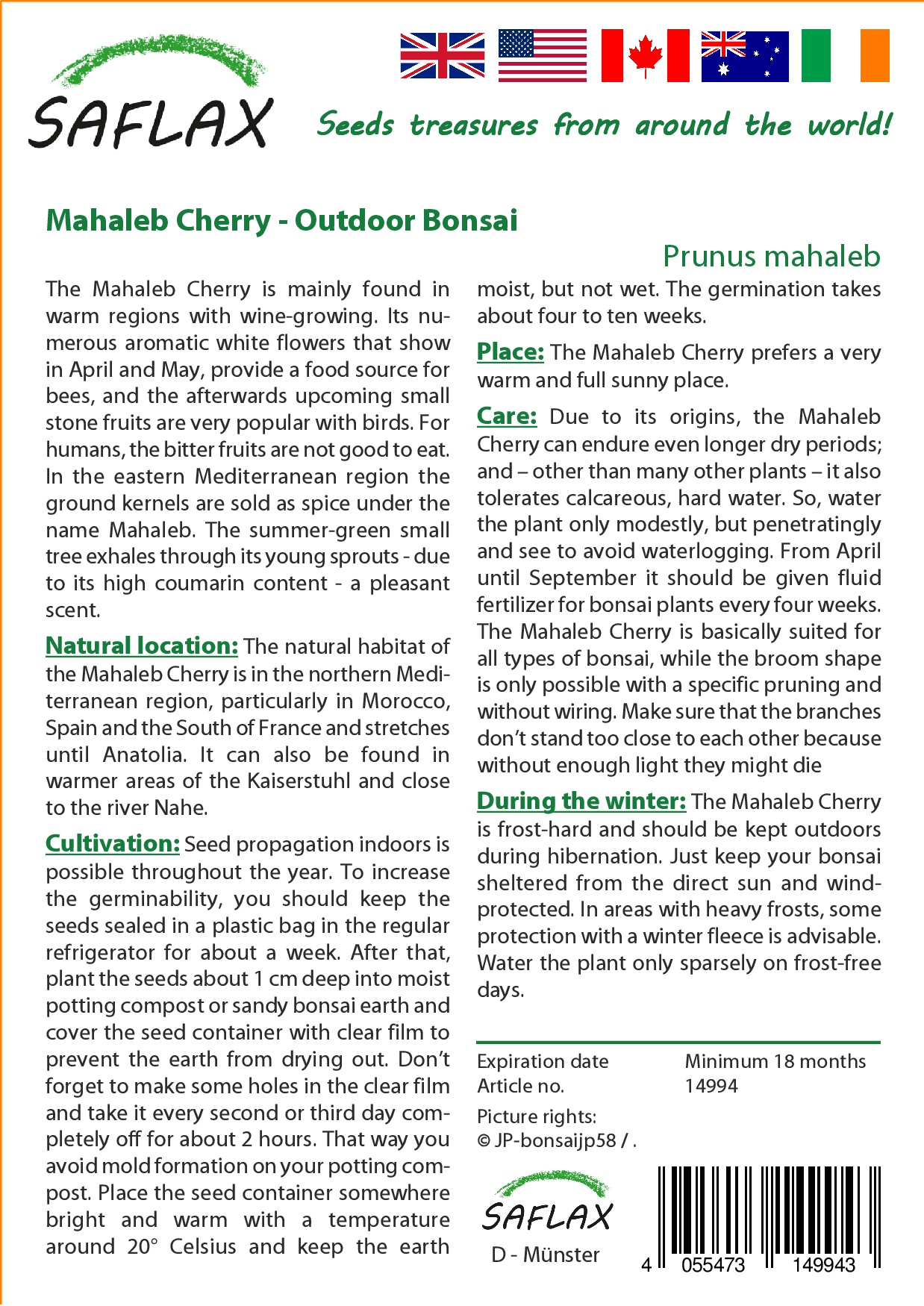 Saflax Bonsai Mahaleb Cherry P End 9 20 2019 337 Am Wiring Wisteria Prunus 30 Seeds With Soil