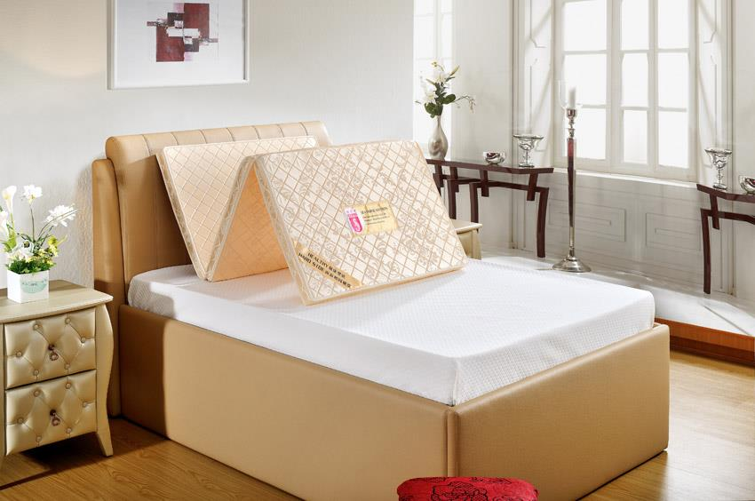Seahorse Single Bed Frame Singapore